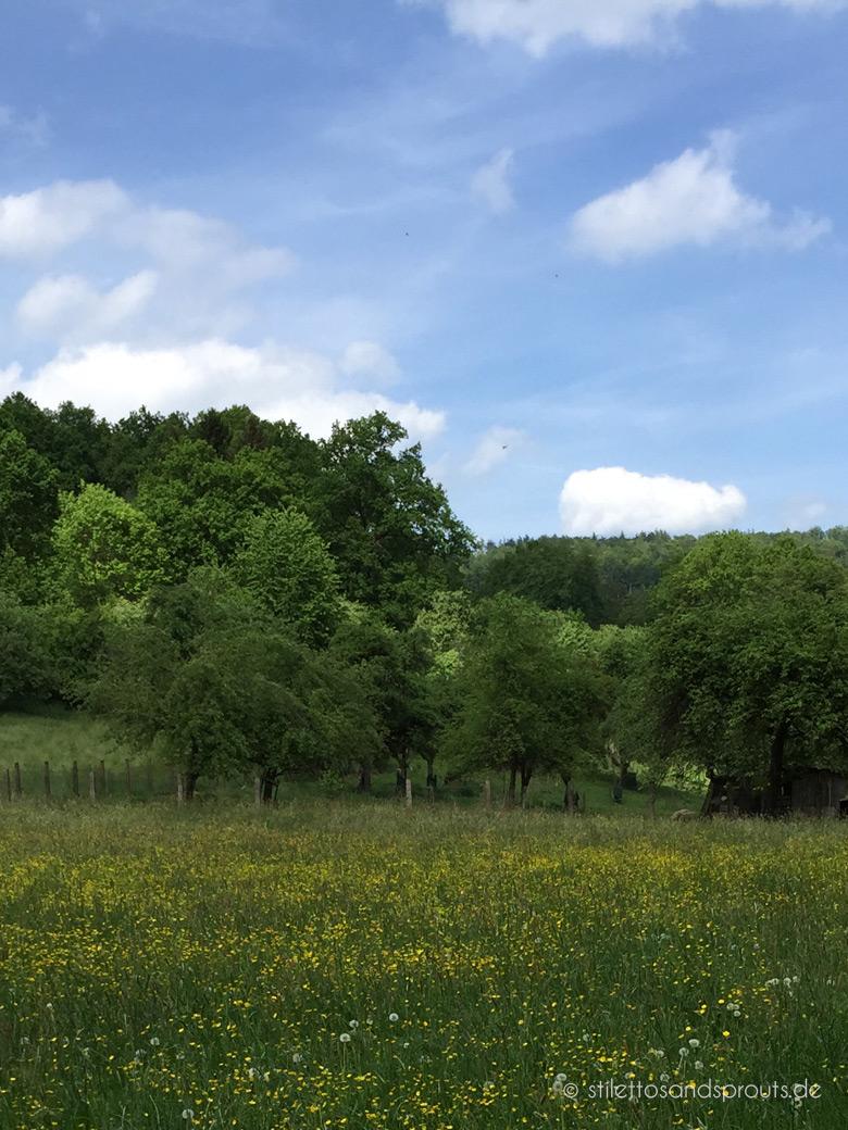 Odenwälder Kochkäse Heimat