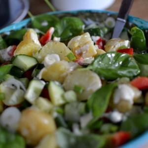 Grüner Kartoffelsalat mit Dijonnaise aus der Degustabox August