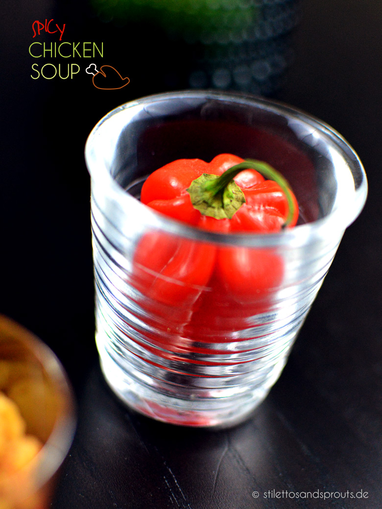 Spicy_Chicken_Soup_05