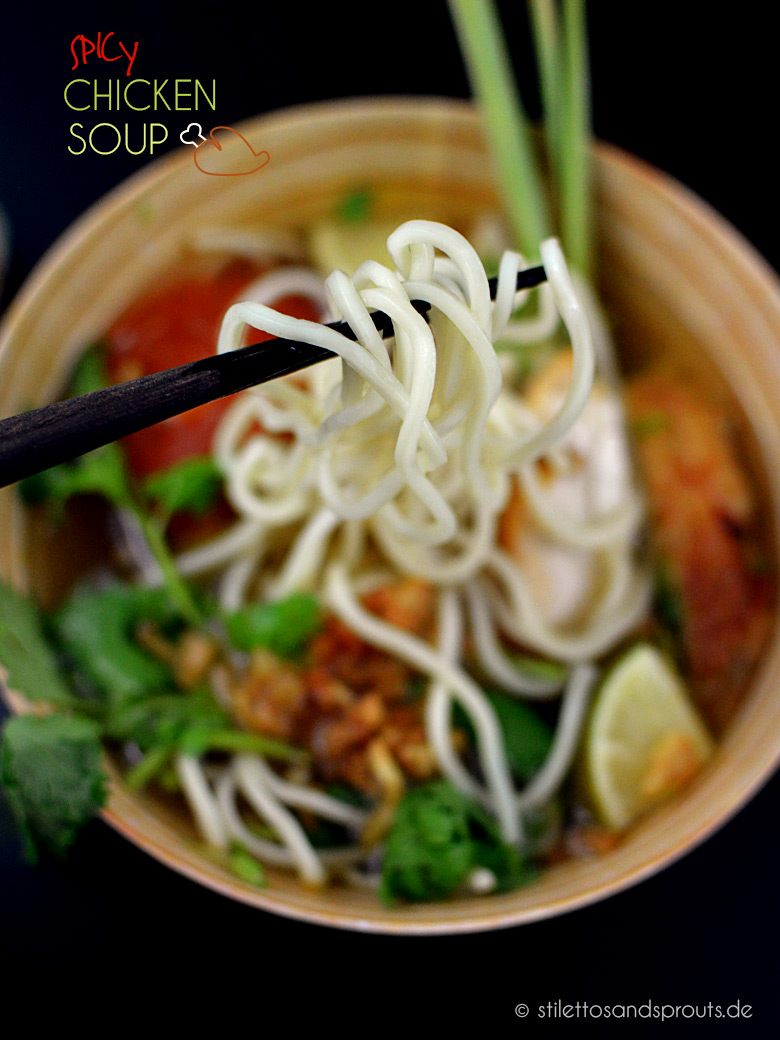Spicy_Chicken_Soup_09