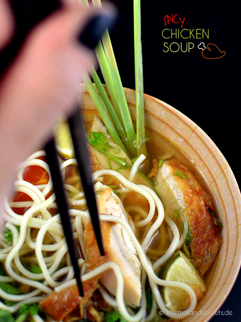 Spicy_Chicken_Soup_11